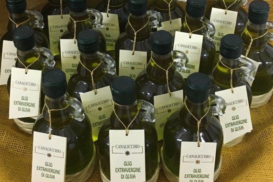 L'olio extravergine di oliva della cantina Franco Pacenti – Canalicchio
