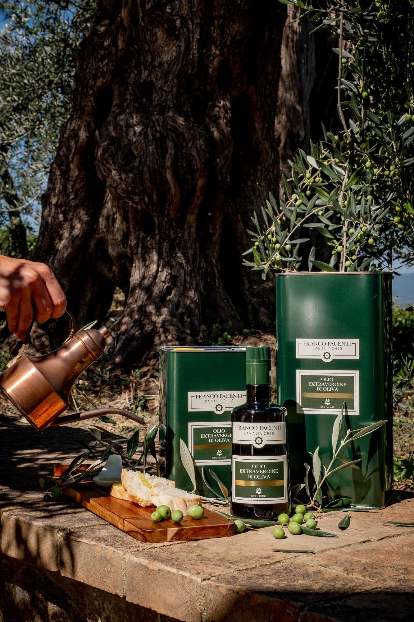 Da Franco Pacenti – Canalicchio è pronto l'olio nuovo!