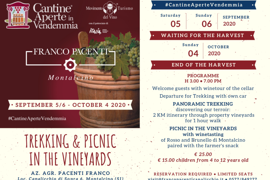 Trekking & Picnic in the vineyards – Cantine Aperte in Vendemmia 2020